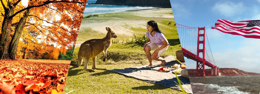 Wealthy Chinese Trillion